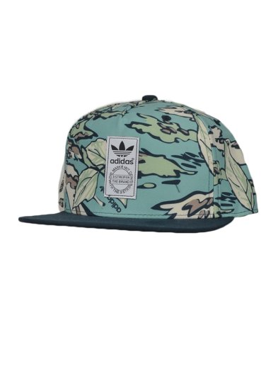 GRAPHIC SB CAP