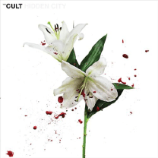 Hidden City LP