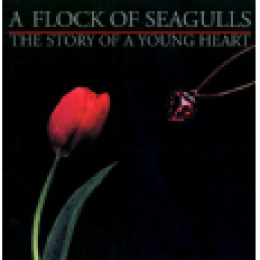 The Story of A Young Heart CD