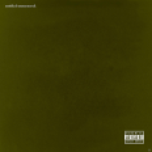 Untitled Unmastered. CD