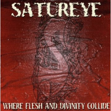 Where Flesh And Divinity Collide CD