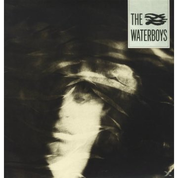 The Waterboys (Vinyl LP (nagylemez))