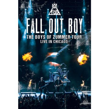 Boyz of Summer - Live in Chicago (DVD)