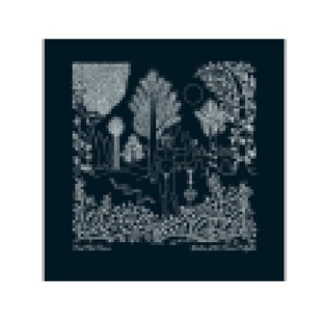 Garden of the Arcane Delights (CD)