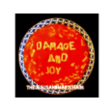 Damage & Joy (CD)