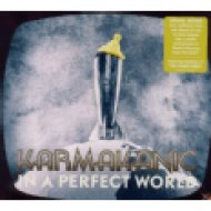 In a Perfect World CD