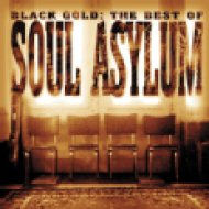 Black Gold - The Best Of Soul Asylum CD