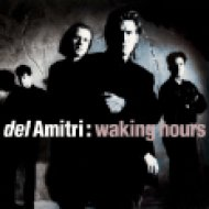 Waking Hours CD