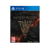 The Elder Scrolls Online: Morrowind (PlayStation 4)