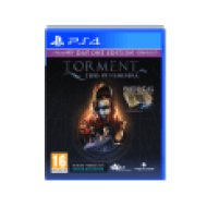Torment: Tides of Numener (PlayStation 4)