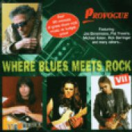 Where Blues Meets Rock 7 CD
