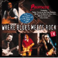Where Blues Meets Rock 4 CD