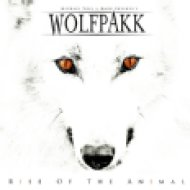 Rise of the Animal CD