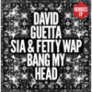 Bang My Head (Remixes EP) LP