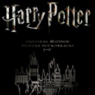 Harry Potter Picture Disc Box (Vinyl LP (nagylemez))