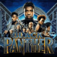 Black Panther: The Album (Fekete Párduc) (CD)