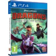 Dragons Dawn of New Riders (PlayStation 4)
