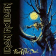 Fear Of The Dark (Remastered) (CD)
